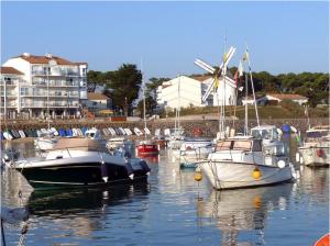 achat immobilier jard sur mer